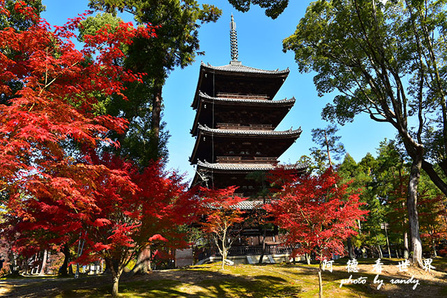 京都1D810 073.JPG
