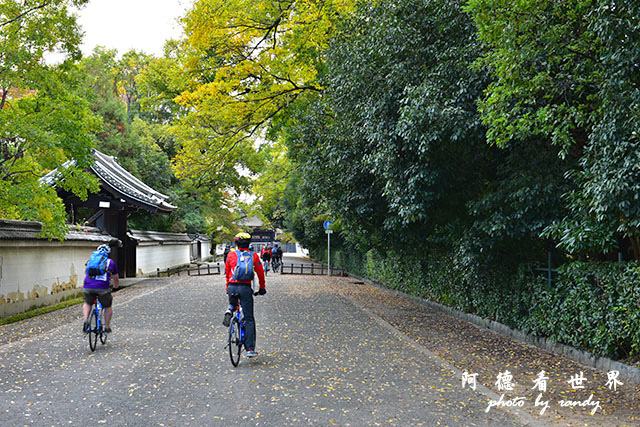 京都1D810 151.JPG