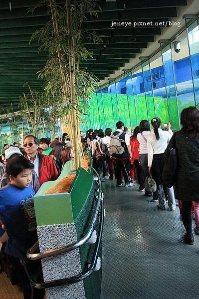 動物園990127