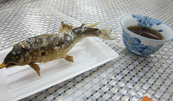 鹽烤香魚+麥茶
