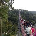 天空之橋,好長一條!