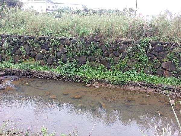 我的櫻芝戀小旅行-邀你一起幸福同行-清澈見底的溪水