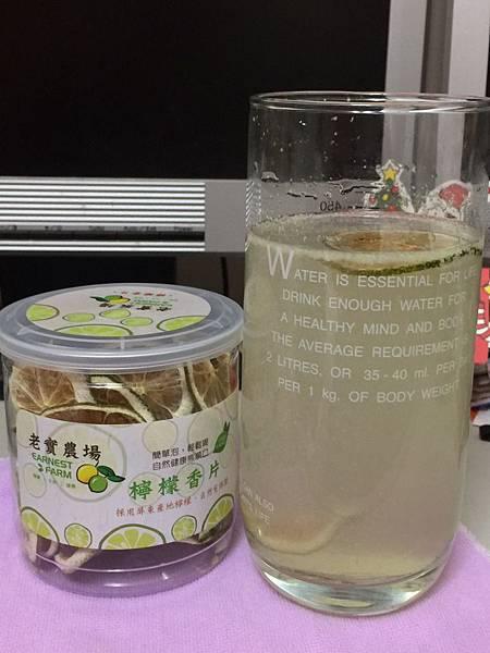 0603老實農場-檸檬香片與檸檬冰磚_8233.jpg
