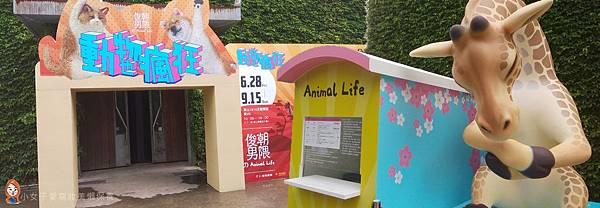 朝隈俊男展覽-動物也瘋狂-5.jpg