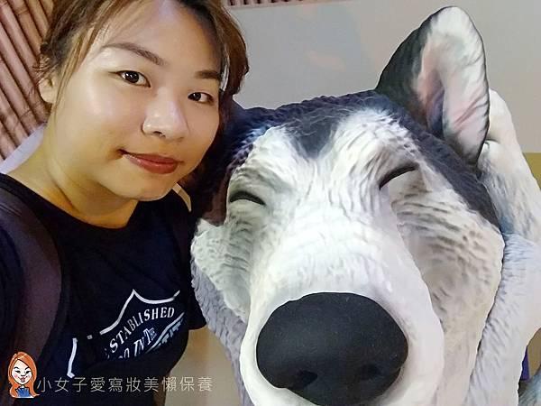 朝隈俊男展覽-動物也瘋狂-13.jpg