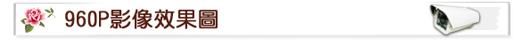 苗栗監視器材行,豐原監視器,彰化監視器批發,南投監視器店,IPCAM 200萬畫素半球紅外線彩色網路攝影機,台中監視器維修,彰化監視器專賣店,南投監視器安裝,苗栗監視器材