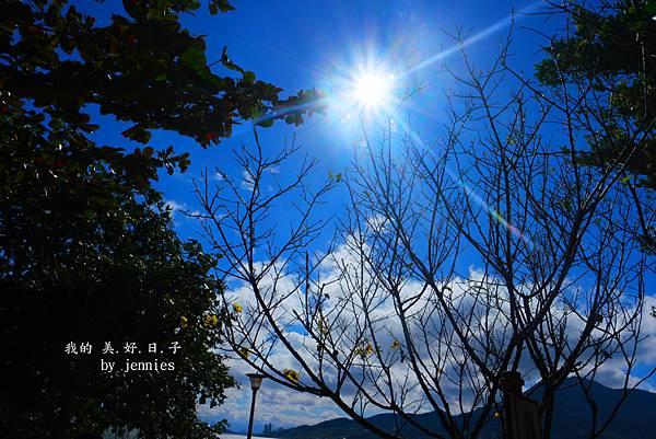 SAM_7307_副本.jpg