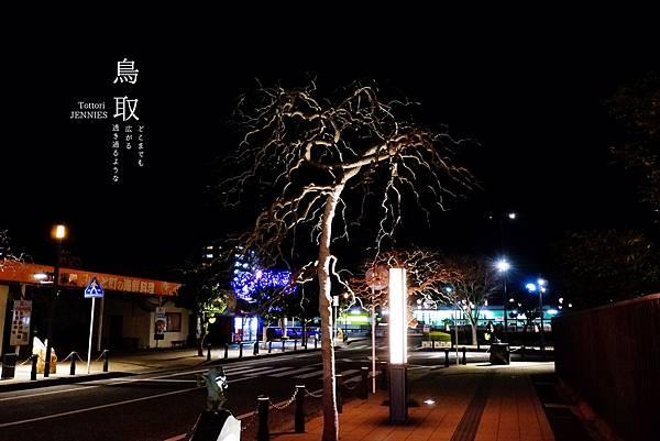 #SCF6085_副本.jpg