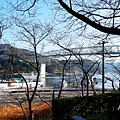 #SCF6213_副本.jpg