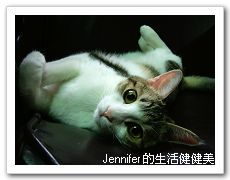 Z2005_1012Image0111.jpg