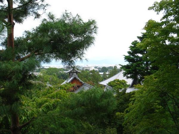 從庭院高處看遠處