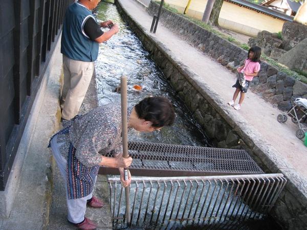 有日本歐巴桑來清水溝和餵魚,魚吃仙貝