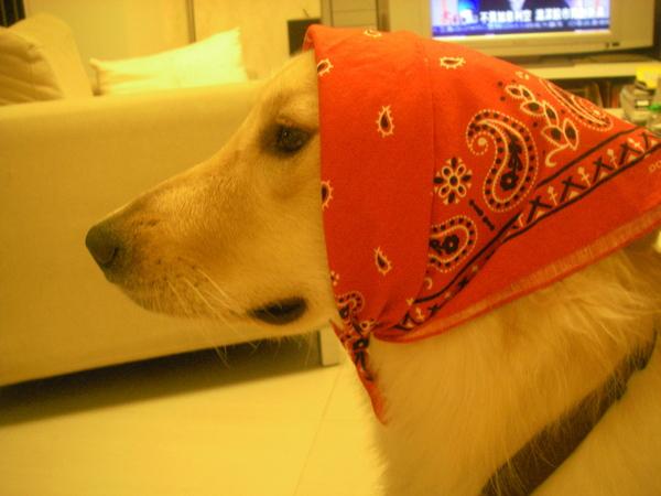 裝優雅的俄羅斯村姑