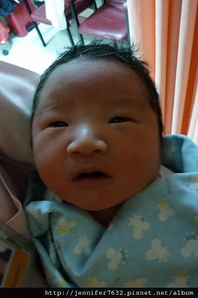 1D_老成嬰兒.jpg