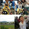 20130719_081343-tile.jpg