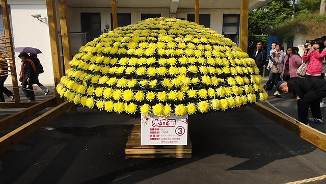 2011士林官邸菊花展