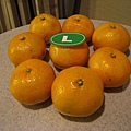 去高島屋超市買L的橘子