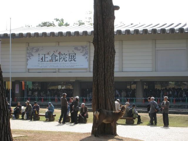 非常多的日本人去看特展