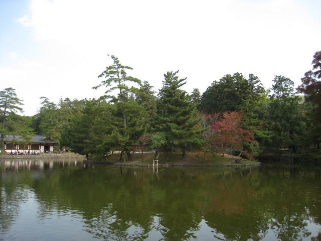 還沒進去東大寺前的水池