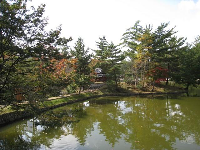 坐在東大寺前的水池邊休息