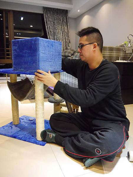 豪華貓爬架 貓跳台 貓窩 貓屋 貓吊床 貓玩具 (26)