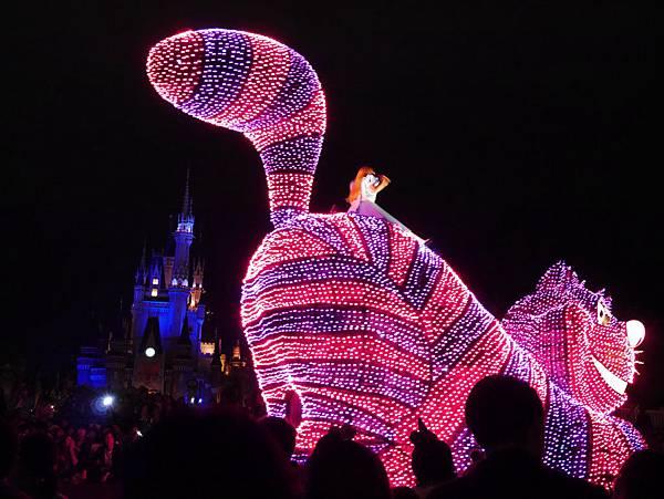 Tokyo Disneyland 東京迪士尼樂園 夜間遊行 東京迪士尼夢之光夜間遊行 (24)