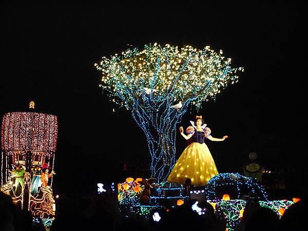 Tokyo Disneyland 東京迪士尼樂園 夜間遊行 東京迪士尼夢之光夜間遊行 (31)