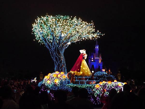 Tokyo Disneyland 東京迪士尼樂園 夜間遊行 東京迪士尼夢之光夜間遊行 (33)