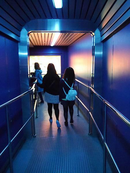 Tokyo Disneyland 東京迪士尼樂園 (65)