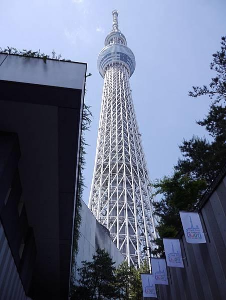 晴空塔 東京スカイツリー Tokyo Skytree (22)