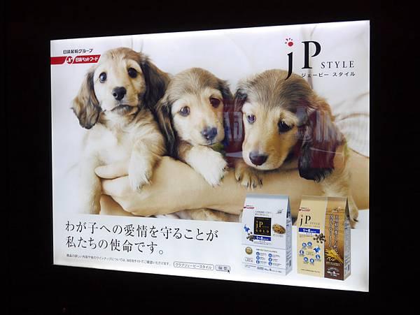 晴空塔 東京スカイツリー  Tokyo Skytree (5)