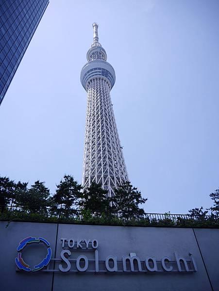 晴空塔 東京スカイツリー  Tokyo Skytree (33)