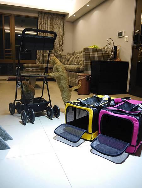 WILL雙層包包可拆式推車 (4)