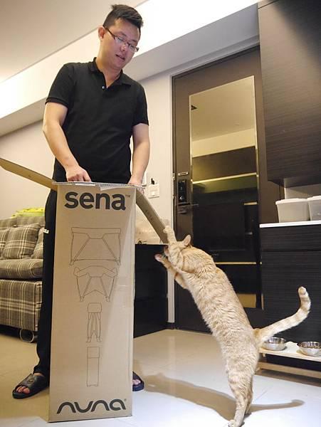 nuna sena遊戲床 (7)