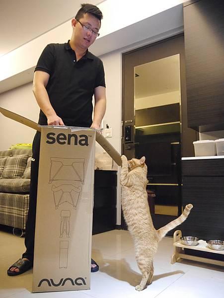 nuna sena遊戲床 (8)