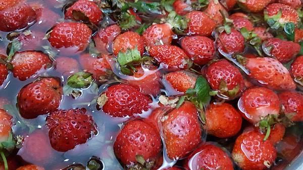好茶 內科飲料外送 草莓紅茶 (1)