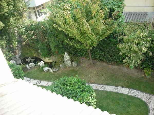 庭院裡的魚池