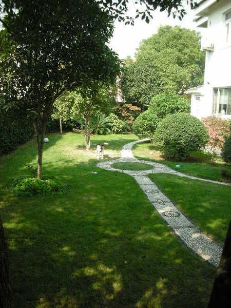 最愛綠綠的庭院
