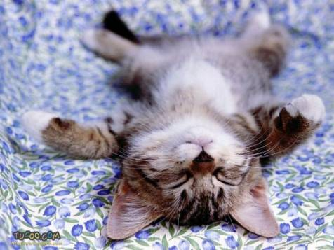 這樣睡好涼喔!