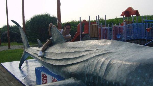 表弟表演騎鯨魚壓車