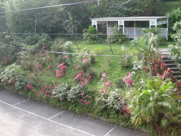 隱花園森林之家