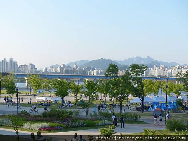 汝矣渡口旁的漢江公園