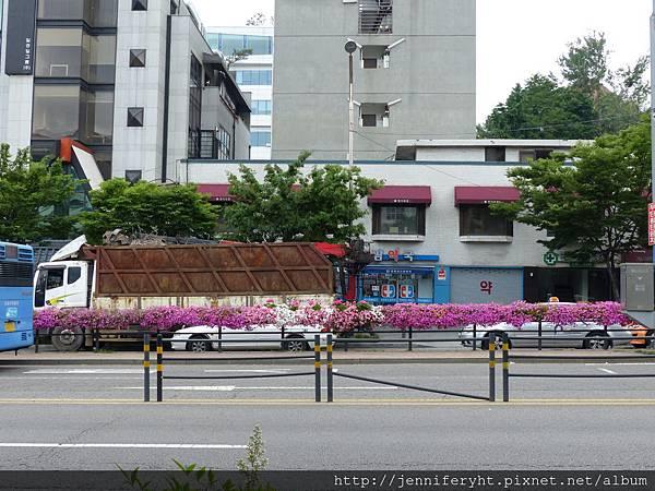公車站放了很多漂亮的花