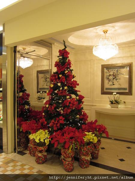 漂亮的聖誕樹