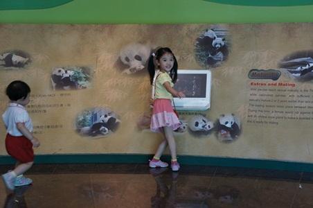 動物園053