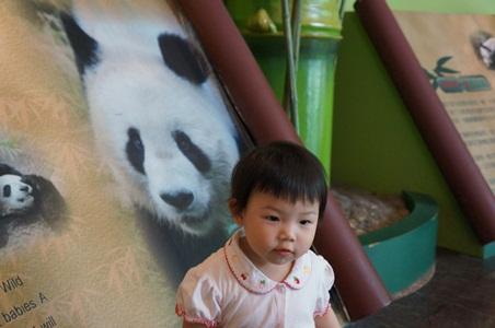 動物園058