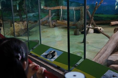 動物園066