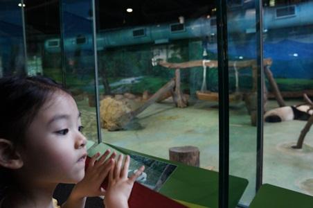 動物園071