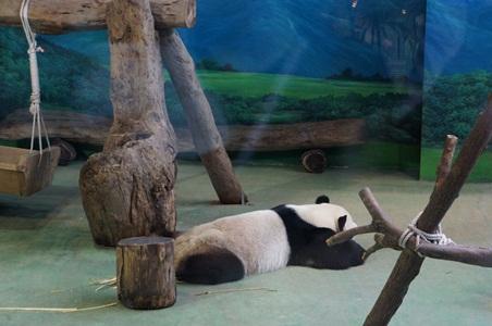 動物園072