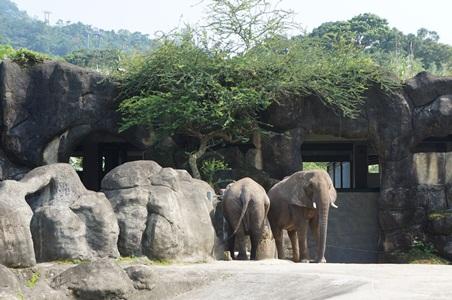 動物園121